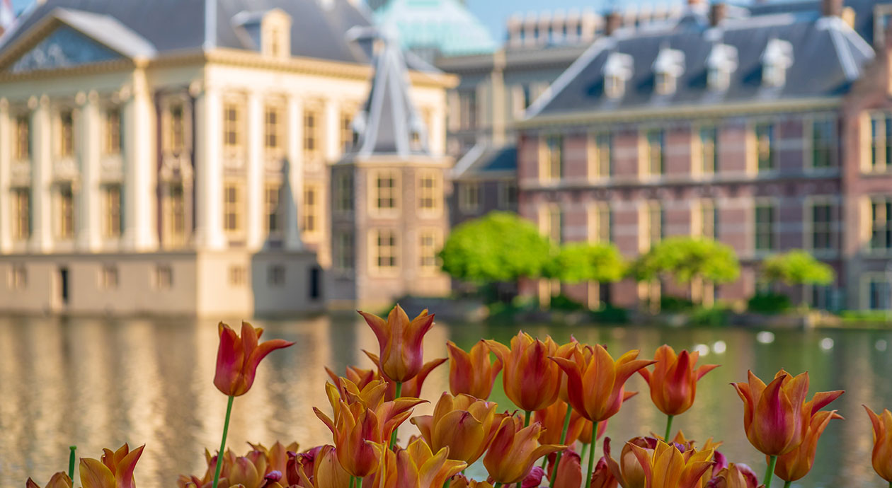 Prinsjesdag | Den Haag