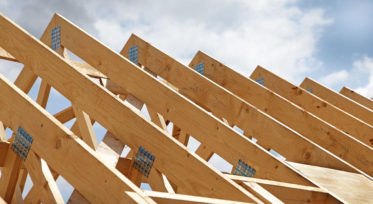 Modulair, circulair en natuurinclusief bouwen: Stikstof is de doorbraak voor hout