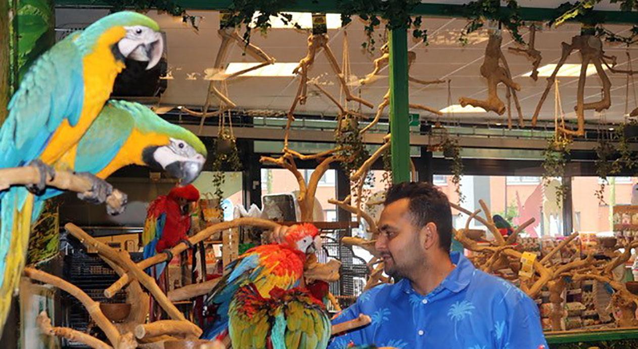 Ook papegaaien verdienen een paleis